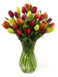 Tulips In Vase 32