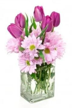 Tulips In Vase 46