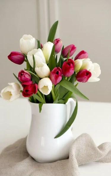 Tulips In Vase 71