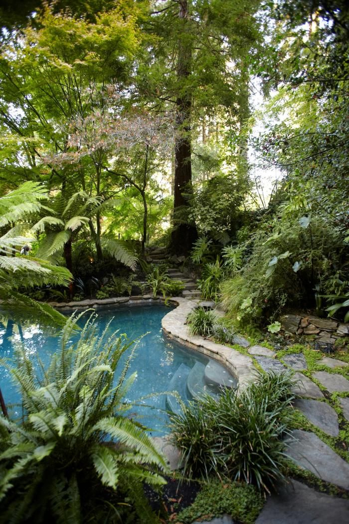 Beautiful Backyards With Pools 114
