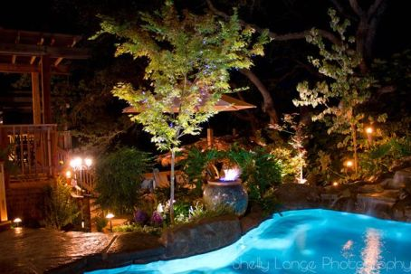 Beautiful Backyards With Pools 58
