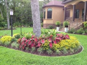 Flower Beds In Front Of House 142