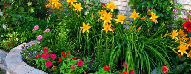 Garden archives decoratoo for Best plants for front flower bed