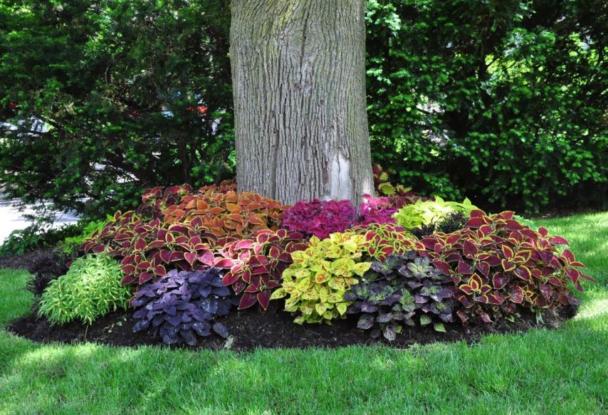 Flower Beds In Front Of House 24