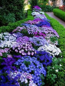 Flower Beds In Front Of House 91