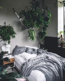 Indoor Plants 60