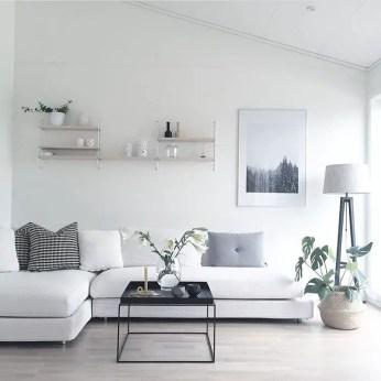Living Room Pillows 14