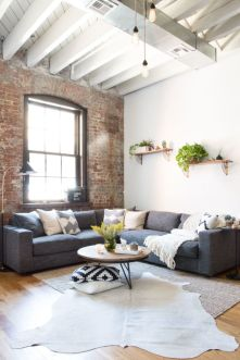 Living Room Pillows 65