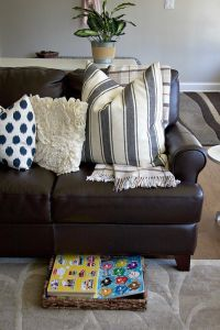 Living Room Pillows 66