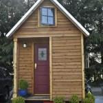 Tiny Luxury Homes 218