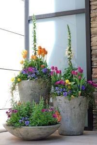 Container Gardening 24
