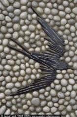 Mosaic Patio 77