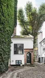 Tiny House Mansion 132