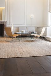 Elegant Contemporary Living Room 46