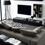 Elegant Contemporary Living Room 75