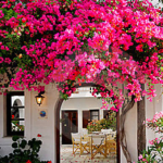 Mediterranean Decor For Your Home 48