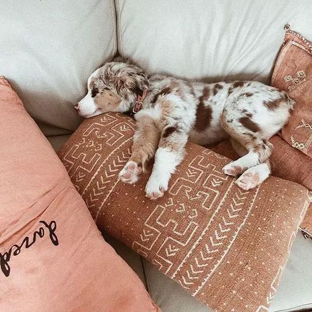 Mudcloth Pillows6
