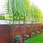 Small Backyard Ideas 9