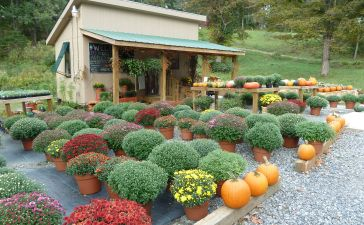 Farm Stand Ideas 17