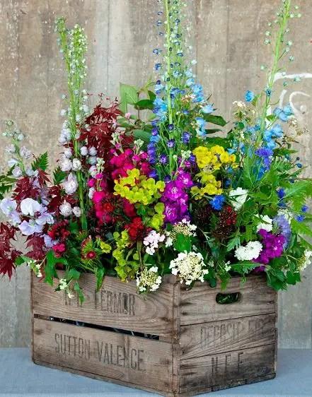 Flower Garden Ideas 5