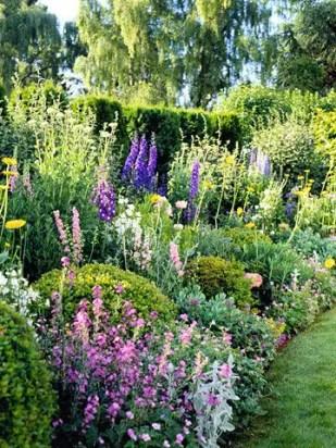 Cottage Garden Front Yard 10