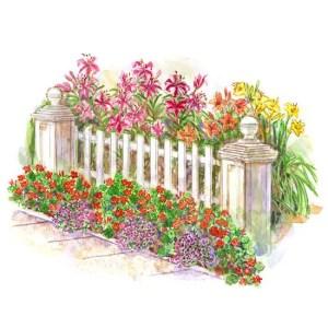 Cottage Garden Front Yard 12