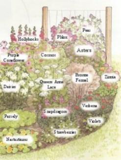 Cottage Garden Front Yard 17