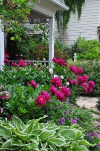 Cottage Garden Front Yard 19