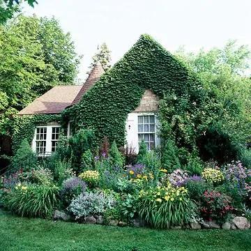Cottage Garden Front Yard 20
