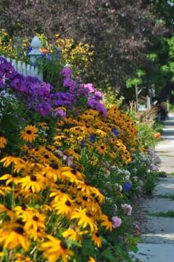 Cottage Garden Front Yard 21