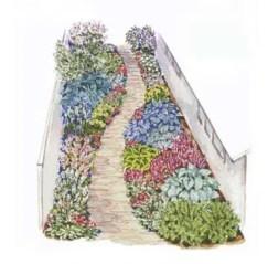 Cottage Garden Front Yard 8