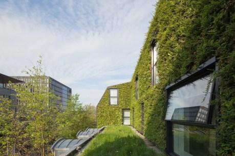 Green Architecture 7