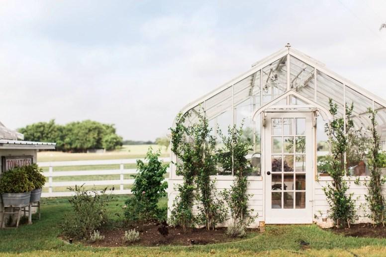 Magnolia House Garden 9