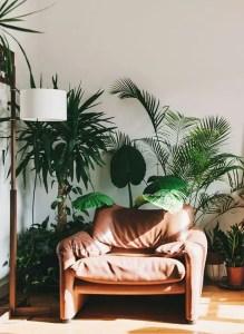 Natural Light Home 31