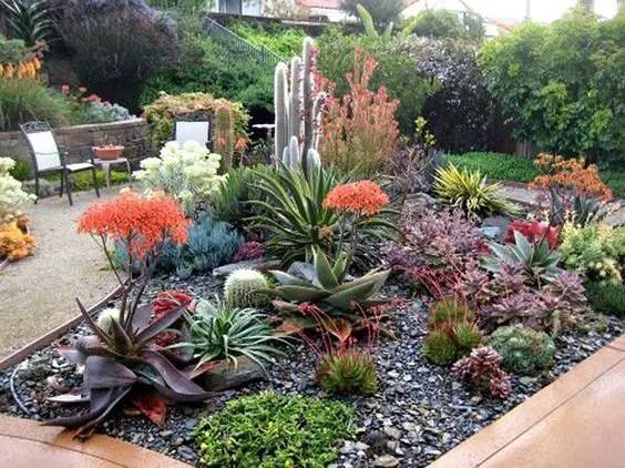 Succulent Design 5