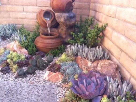 Succulent Design 8