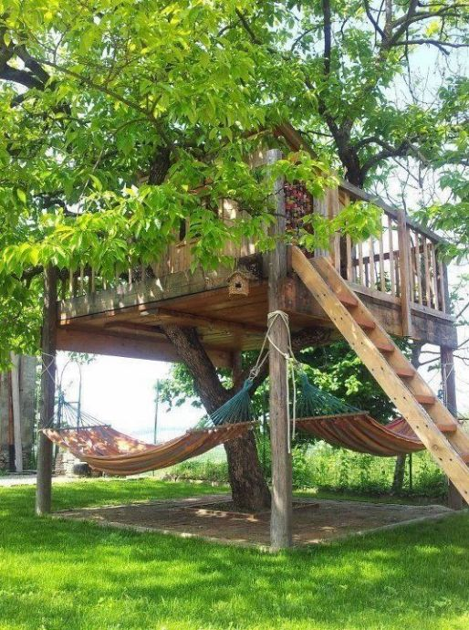 Tree House 13
