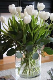 White Tulips 19