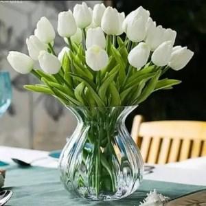 White Tulips 41