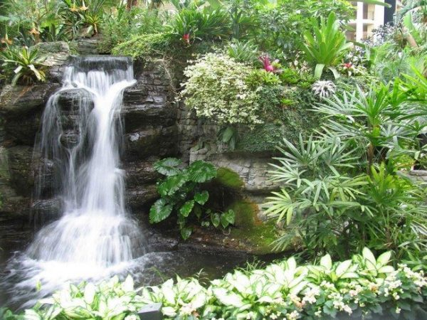 backyard landscaping ideas - decor