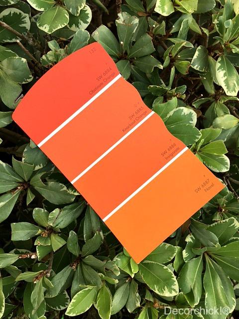 Orange Paint Swatch | Decorchick!®