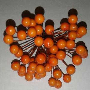 калина оранжевая