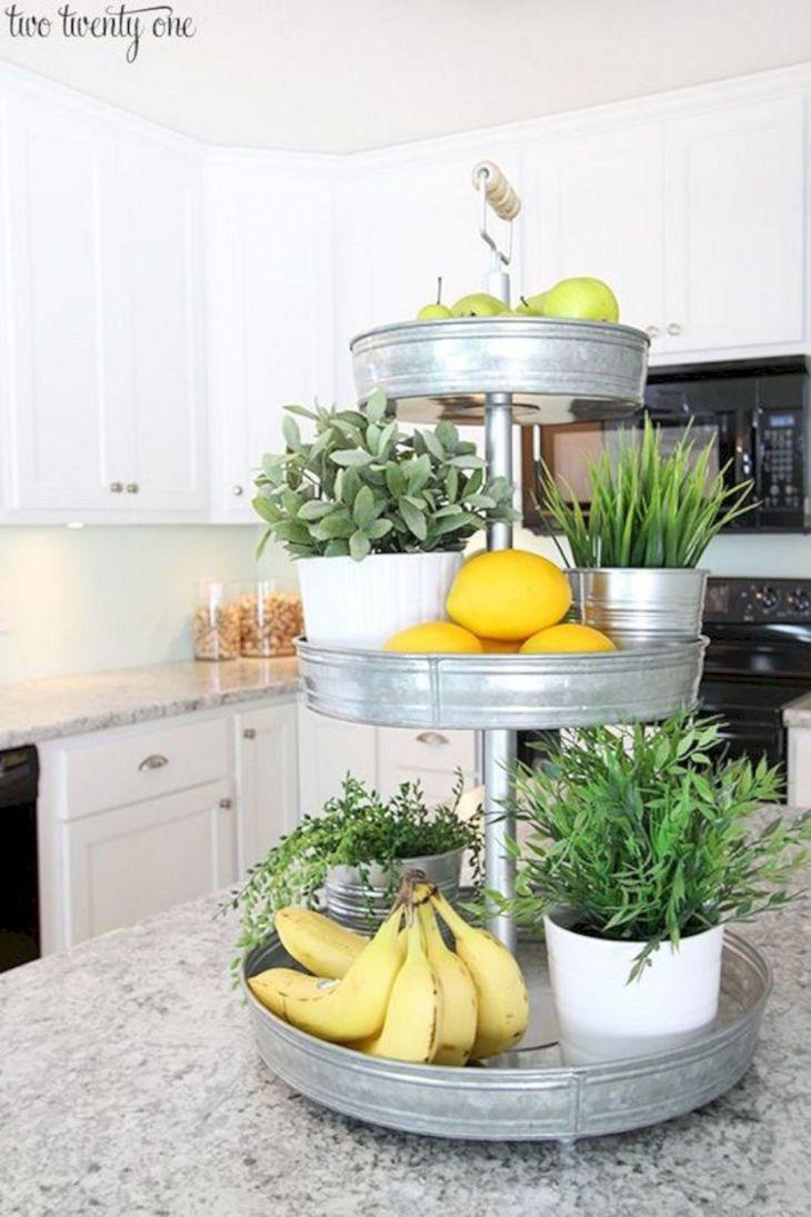 Ornamental Plants Design Ideas