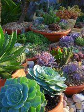 DIY Backyard Ideas On A Budget That Are Superb Genius No 13