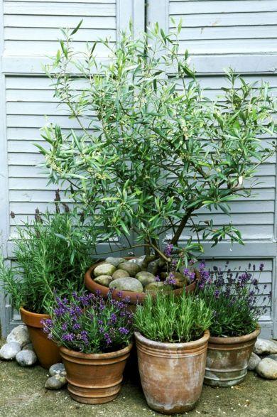 Designing a Garden With Landscape Design Principles 34