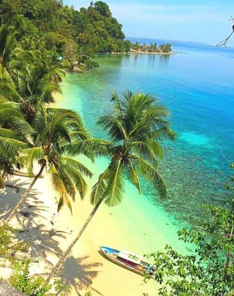 Moluccas Island Indonesia