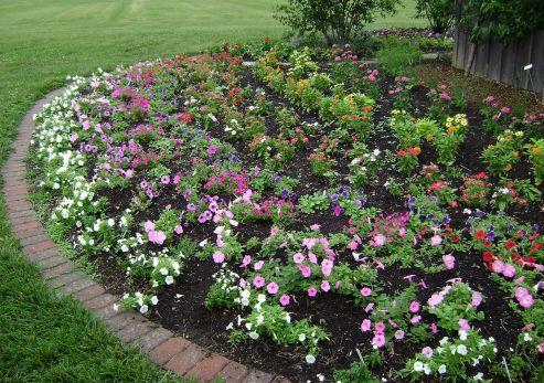 https://i0.wp.com/decoredo.com/wp-content/uploads/2017/07/Beautiful-Rose-Garden-Design-Ideas.jpg?w=493&h=348&ssl=1