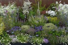 Herb Garden Design 1
