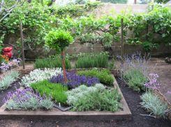 Herbs Garden Design
