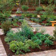 Kitchen Herb Garden Ideas